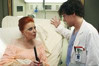 Grey's Anatomy, episodio 2×14