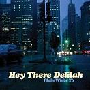 "Plain White T's ""Hey There Delilah"""