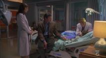Dr. House - Medical Division, episodio 3×19