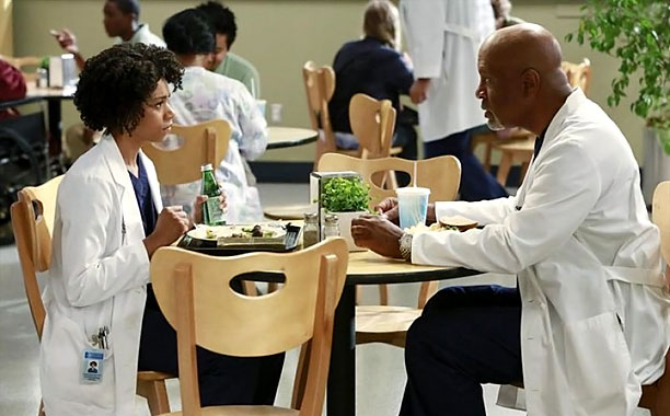 GREYS-ANATOMY-02